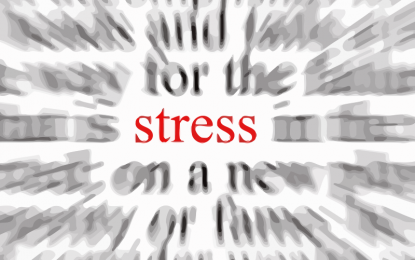 Point of Stress (Kara Lilly)
